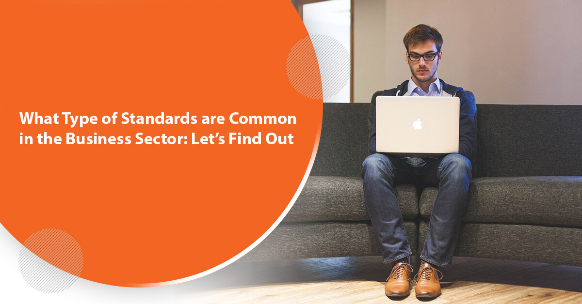 What Type of Standards are Common in the Business Sector Let's Find Out